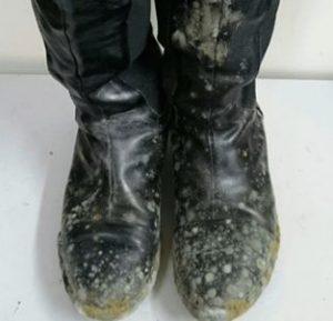 boots_kabi